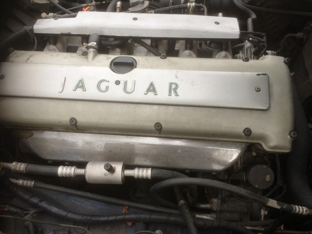 jaguar-verkocht-09